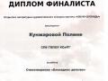 Диплом9 001